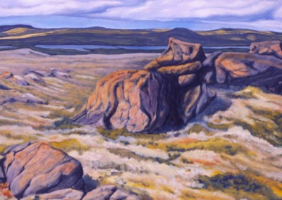 Tundra 20 x 40 oil